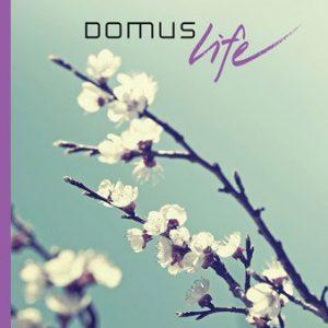 Domus Nova<br>Summer 2013